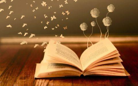 Openliggend boek waaruit bloemen en vogels vliegen
